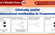 Know All About: Clinically useful monoclonal antibodies in treatment