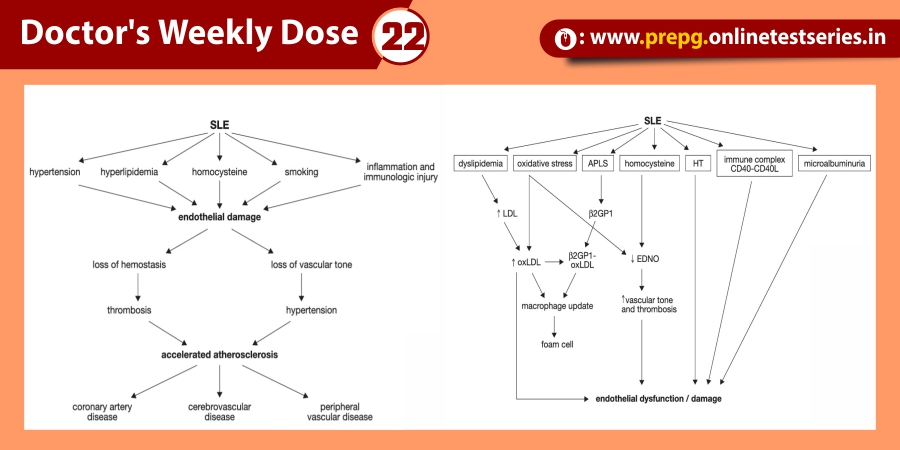 's Weekly Dose 22
