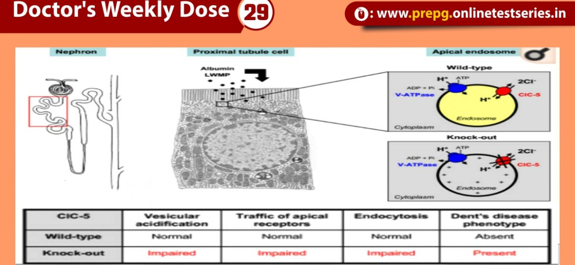 's Weekly Dose 29